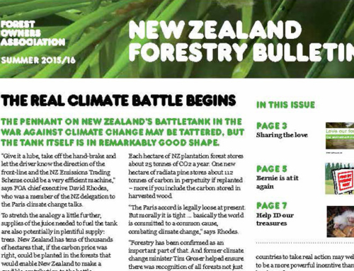 New Zealand Forestry Bulletin, Summer 15/16