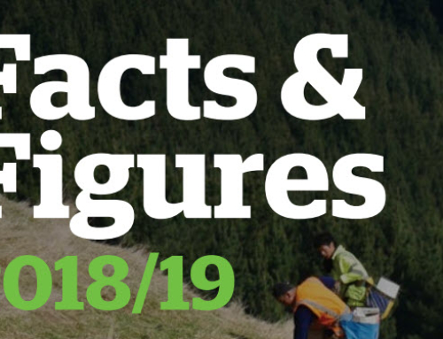 New Zealand Forests Facts & Figures 2018/19