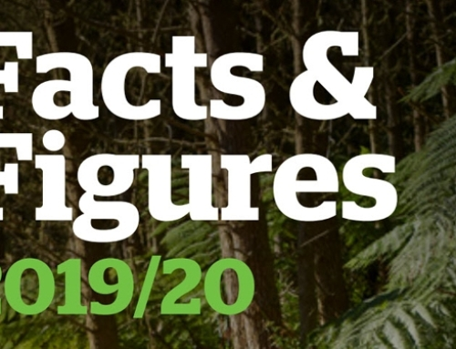 New Zealand Forests Facts & Figures 2019/20